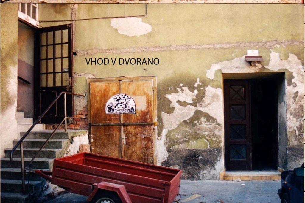 foto: Eka Vogelnik, avtoričin osebni arhiv